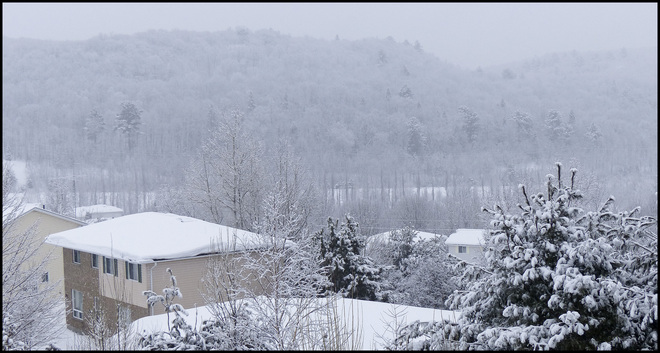 After the snow, view from window. Elliot Lake, Ontario Canada