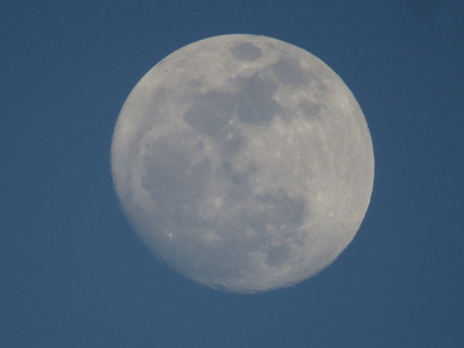 Full Worm Moon Tomorrow! Chester, Nova Scotia Canada