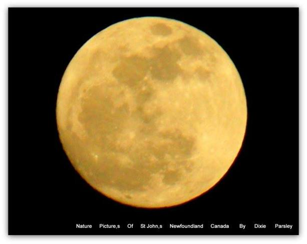 Full moon St. John's, Newfoundland and Labrador Canada