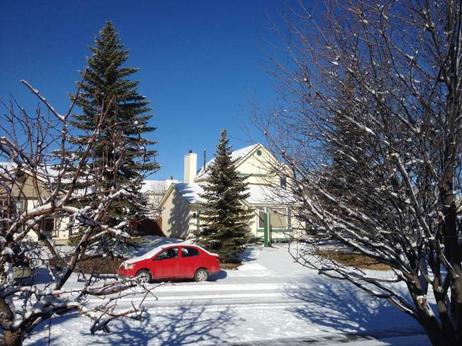 Merry Christmas everyone! Calgary, Alberta Canada
