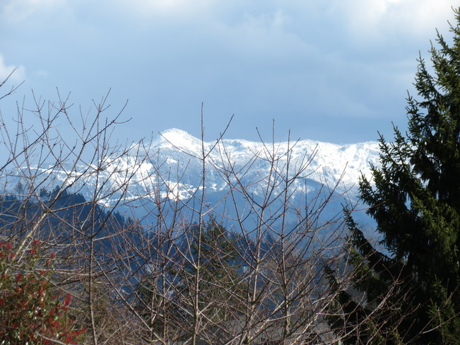 Fresh Snow up on them there Hills! Abbotsford, British Columbia Canada