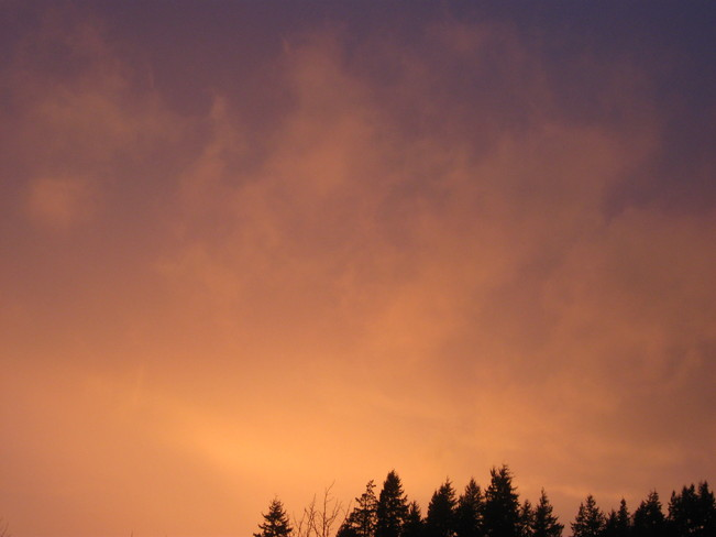 orange sky Surrey, British Columbia Canada