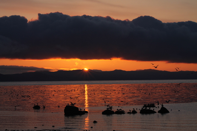 sunrise over Powell River Comox, British Columbia Canada