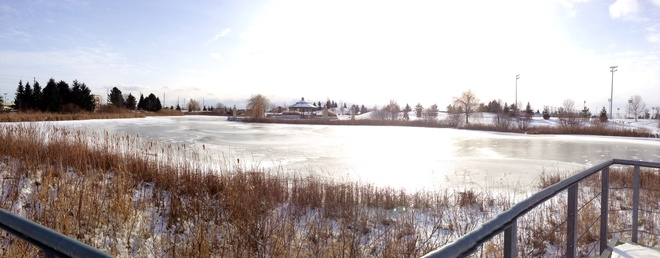 Frozen Pond! Richmond Hill, Ontario Canada