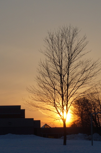 Last rays of sunshine Waterloo, Ontario Canada