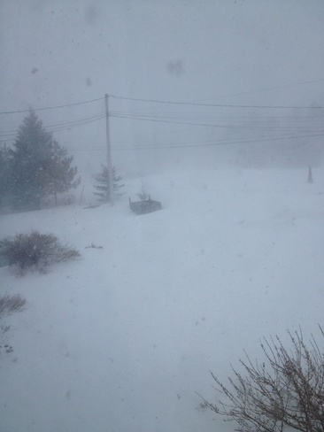 white out Rothesay, New Brunswick Canada