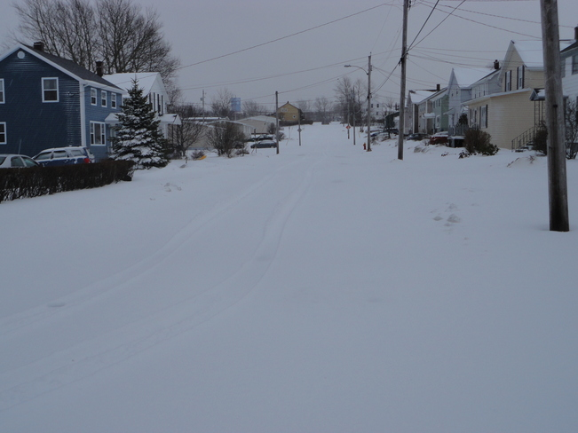 Early Spring Blizzard Sydney, Nova Scotia Canada