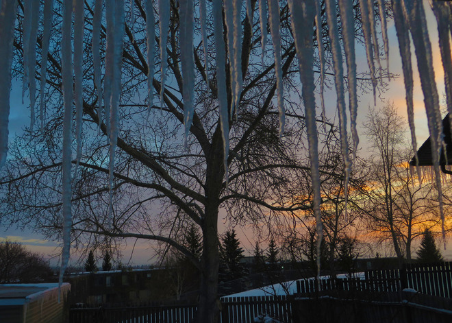 Sunrise through icicles Calgary, Alberta Canada