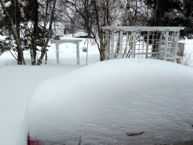 Mother Nature's April Fool Joke on N. B. Moncton, New Brunswick Canada