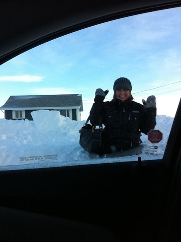 crawling out to work ! Salmon Beach, New Brunswick Canada