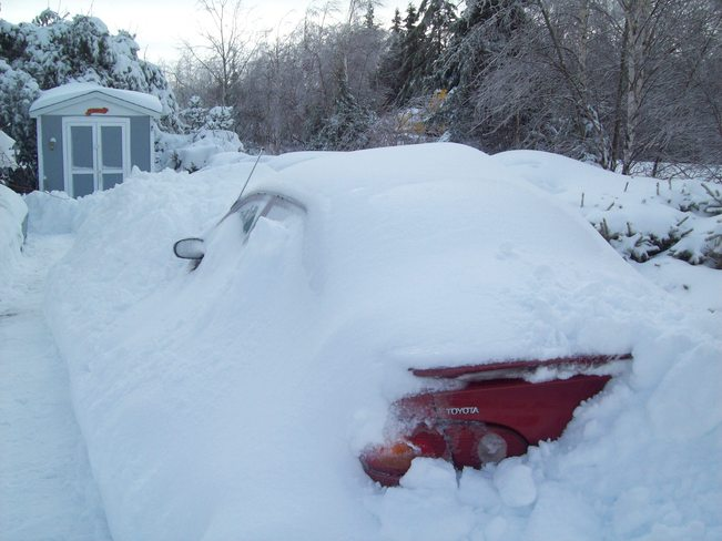 Has anyone seen my car??? North Sydney, Nova Scotia Canada