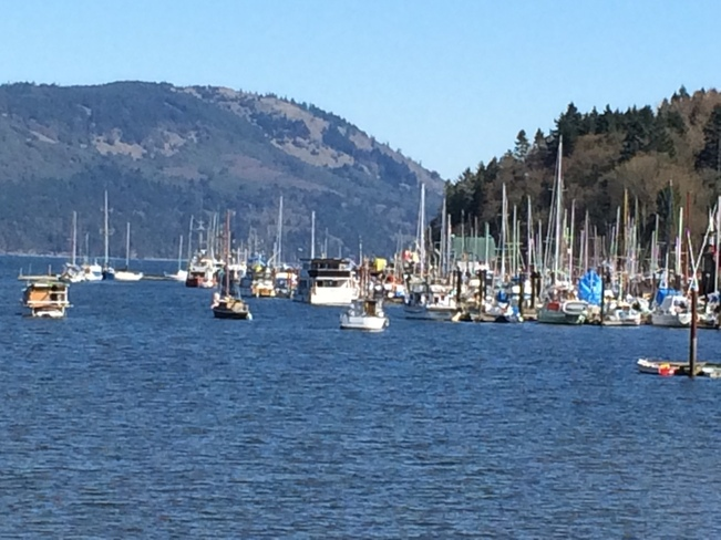Sunny day Cowichan Bay, British Columbia Canada
