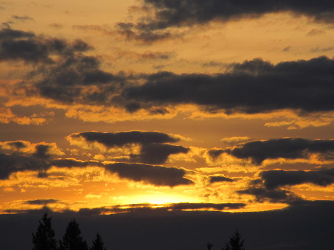 Sunrise Today Cloverdale, British Columbia Canada