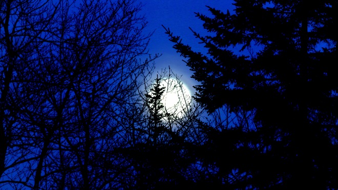 Big Moon Dark Blue Night Middle Beaver Bank, Nova Scotia Canada