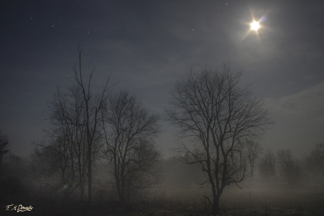 Foggy fields in the moonlight Smiths Falls, Ontario Canada