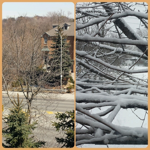 Yesterday & today North York, Ontario Canada