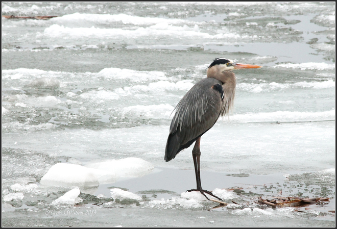 GBH Kingston, Ontario Canada