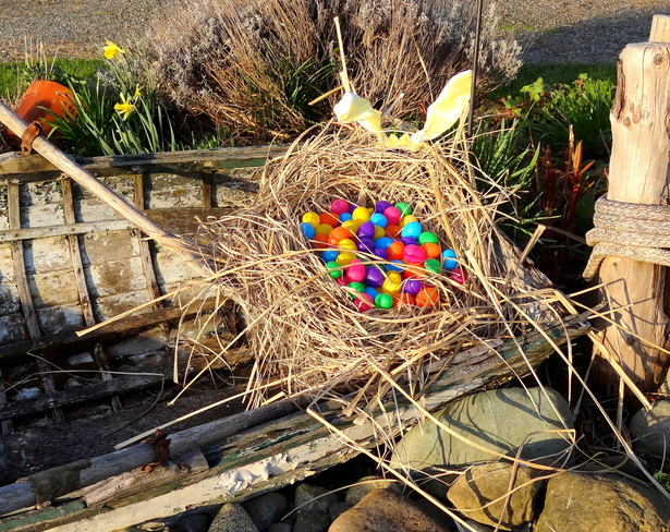 Easter nest in Rosyton Royston, British Columbia Canada