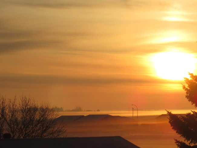 Yellow Sun Rise Fog Kindersley, Saskatchewan Canada