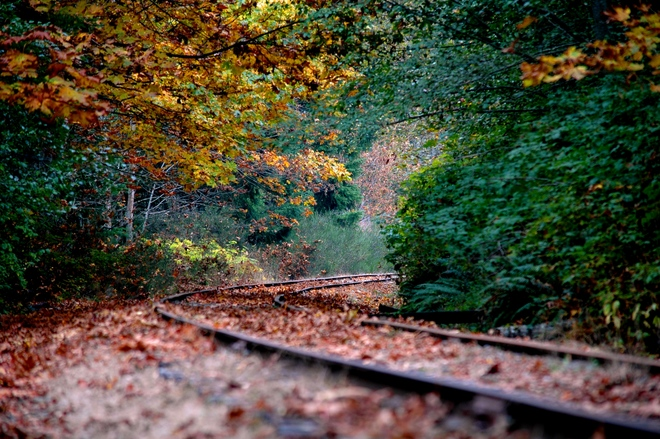 Tracks Victoria, British Columbia Canada