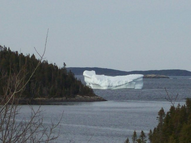 Iceberg at St.Chad's Eastport, Newfoundland and Labrador Canada