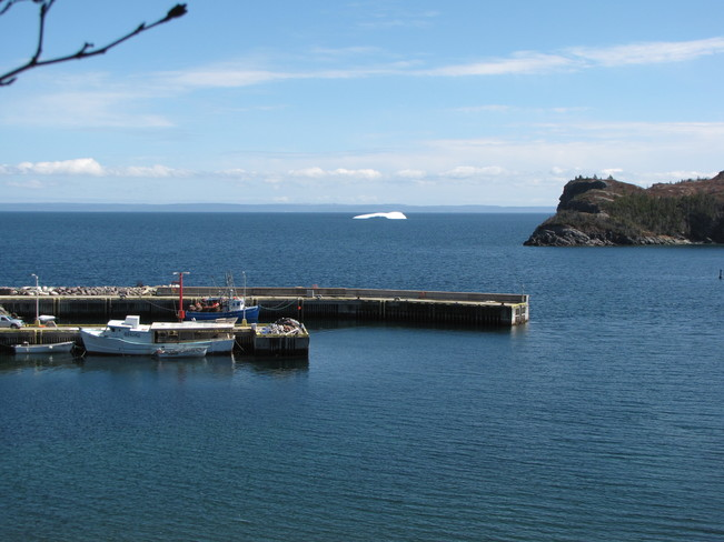Icebergs in Trinity Bay Clarenville-Shoal Harbour, Newfoundland and Labrador Canada