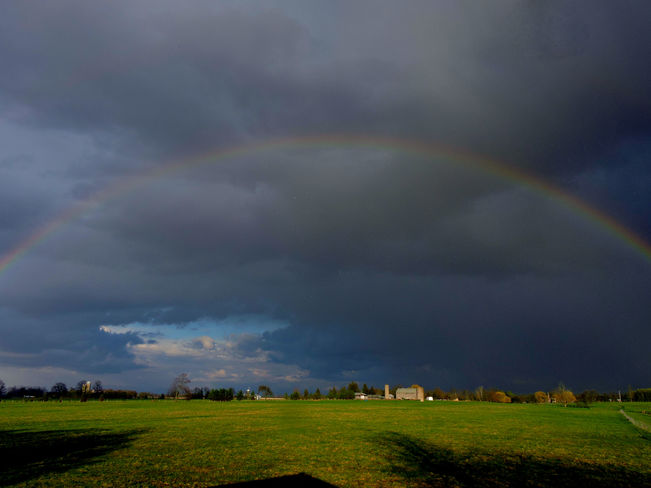 Rainbow season is upon us Ilderton, Ontario Canada