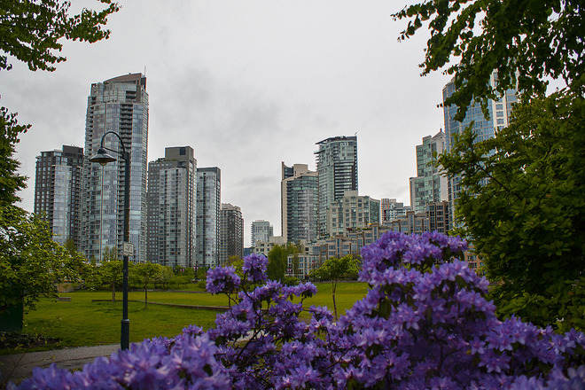 The City and the Flowers Vancouver, British Columbia Canada