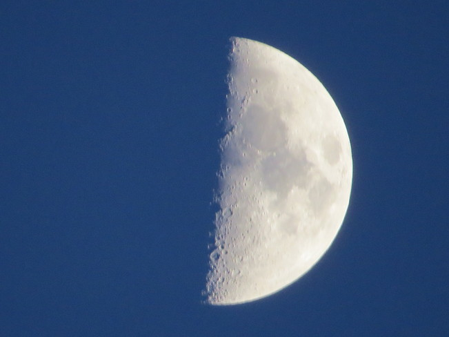Clear Night Sky Half Moon New Westminster, British Columbia Canada