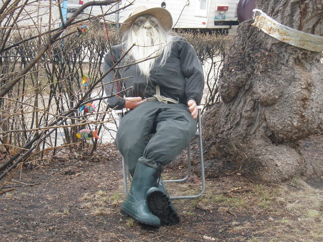 old man in the garden Winnipeg, Manitoba Canada