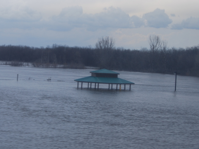 Flooded Gazebo Brandon, Manitoba Canada