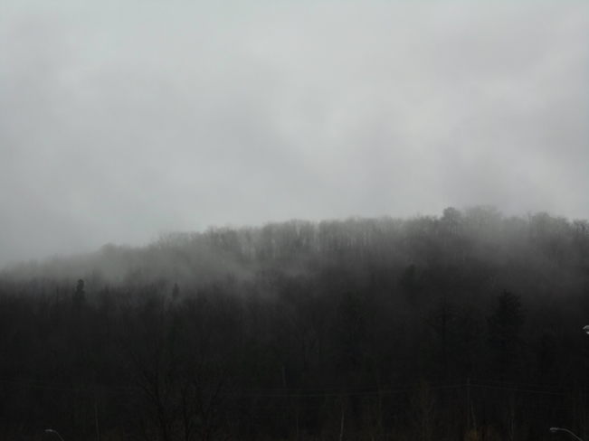 The Trees were letting off steam today Elliot Lake, Ontario Canada