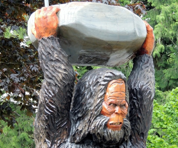 Sasquatch Tool To Crack Open Walnut Harrison Hot Springs, BC