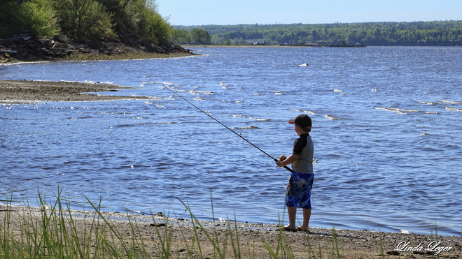 Young Fisher 1561 Wellington Street, Miramichi, NB E1N, Canada