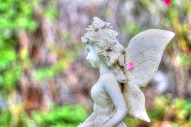 Angel With Petal Saskatoon, SK