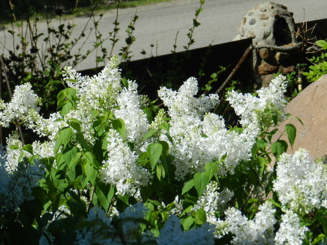 White Lilacs Resrt Village of B-Say-Tah, Fort Qu'Appelle, Saskatchewan