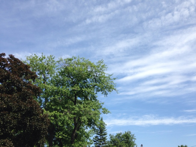 wispy clouds Windsor, Ontario Canada