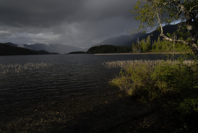 Kennedy Lake, Vancouver Island. Kennedy Lake, Vancouver Island, Alberni-Clayoquot C, BC