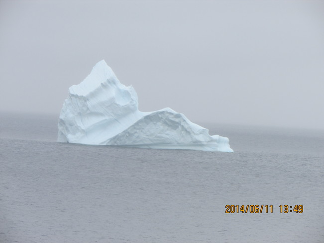 GOHSTLY IMAGES OUT OF THE FOG. NEWMANS COVE /AMHERST COVE NEWFOUNDLAND