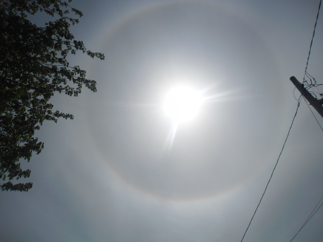 I took a picture of the sun today North Sydney, NS