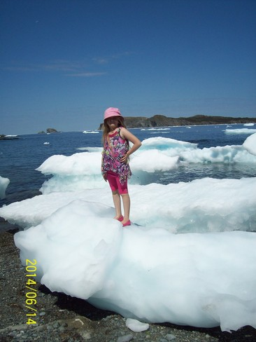 ARTIC ICE ON THE BEACH Twillingate, NL