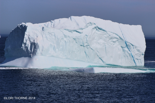 iceberg watching on fathers day 2014 St. John's, NL