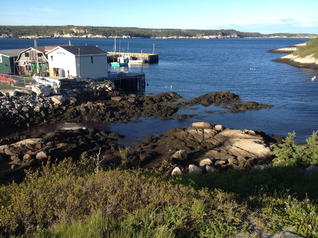 the tide is out Terence Bay, Nova Scotia Canada