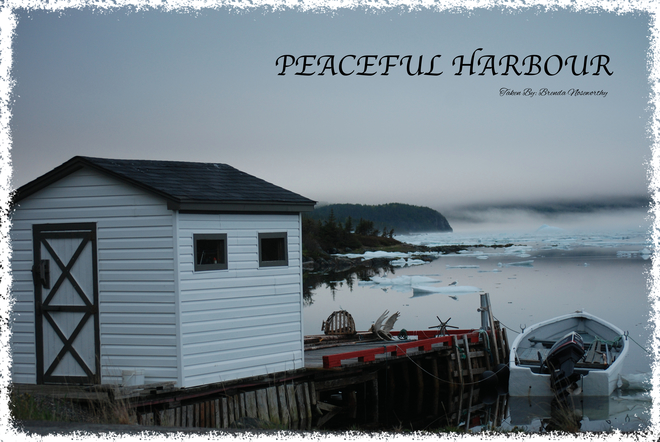 Peaceful Harbour Brighton, NL, Canada
