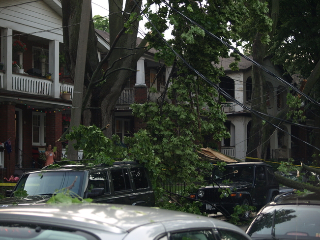 June storm brings down branches and power cables in East Toronto Toronto, ON