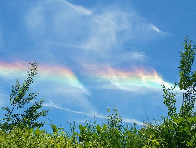 Cloud Iridescence Phenomenon