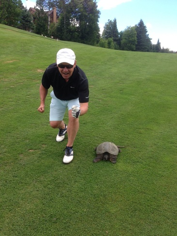 The Tortoise & The Golfer Mont-Tremblant, QC