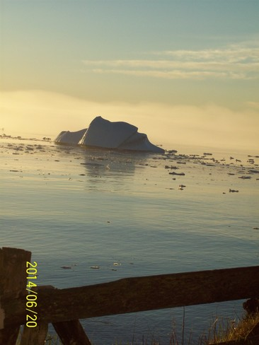 ICE BURG IN FOG AT SUN RISE Twillingate, NL
