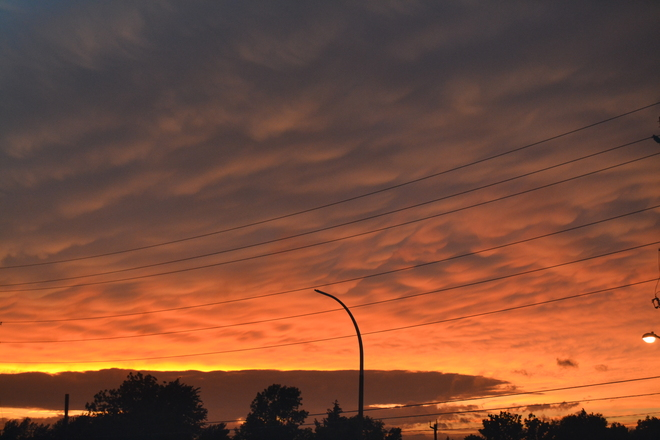 Awesome skies Belleville,Ontario