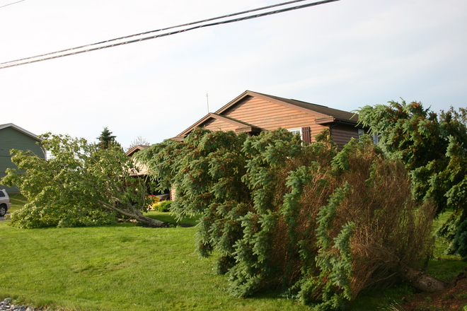 Albert damage Saint John, NB